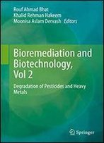 Bioremediation And Biotechnology, Vol 2: Degradation Of Pesticides And Heavy Metals