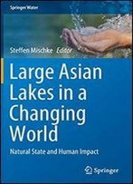 Large Asian Lakes In A Changing World: Natural State And Human Impact