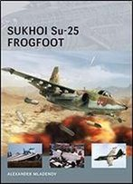 Sukhoi Su-25 Frogfoot (Air Vanguard)