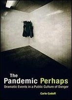 The Pandemic Perhaps: Dramatic Events In A Public Culture Of Danger